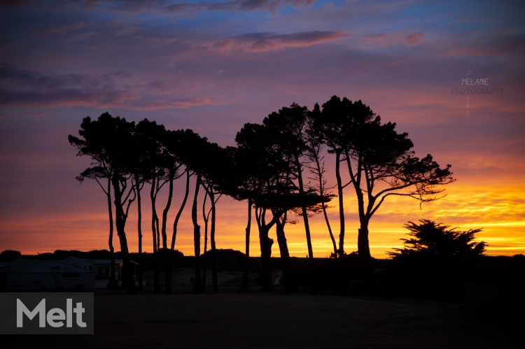 Sunset-golf-course_1275-2-re.jpg