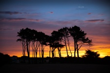 Sunset-golf-course_1279-2-re.jpg